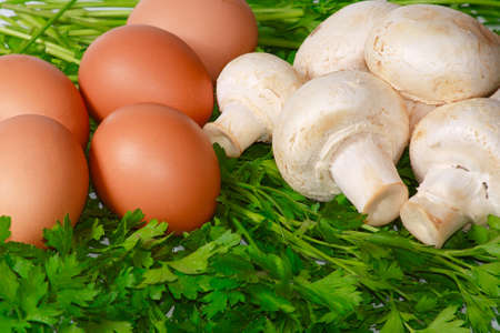 champignons: The raw white champignons with eggs and fresh greens Stock Photo
