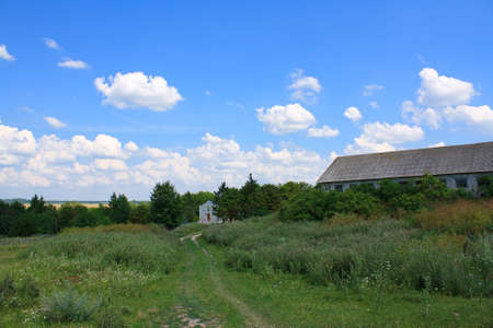 Summer landscape with green meadow and blue sky Stock Photo - 10266344