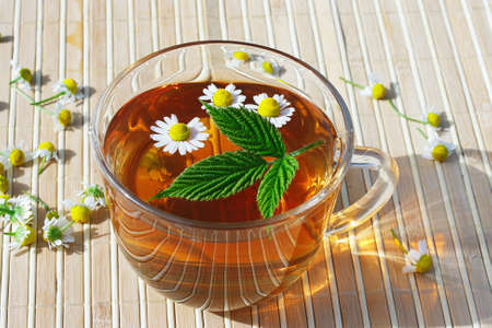 Cup of herbal tea with chamomile and green leaf still life photo
