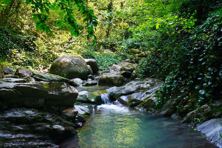 marvellous: Marvellous mountain stream among the southern forests Stock Photo