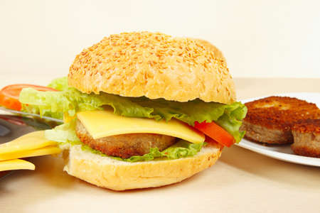 flavorful: Great flavorful hamburger with cheese close up Stock Photo