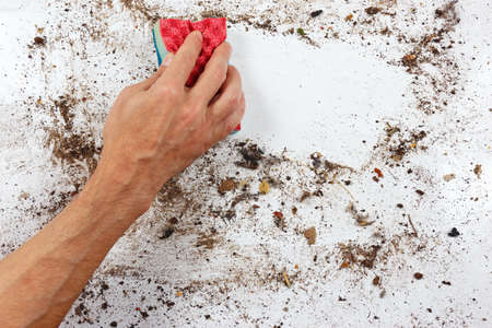 very dirty: Hand with red sponge cleans a very dirty surface