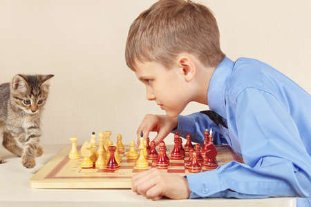 Beginner grandmaster with a pretty kitten plays chess.