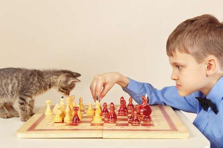 Beginner grandmaster with a playful kitten plays chess.
