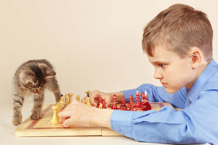 Young grandmaster with a striped kitten plays chess. Stock Photo