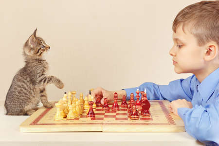 Little grandmaster with a pretty kitten plays chess.