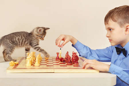 Little chessplayer with a pretty kitten plays chess. photo