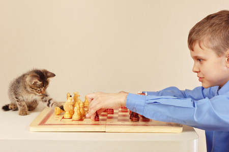 Young boy with a tabby kitten plays chess. photo