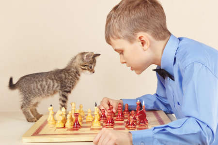 Young chessplayer with a kitten plays chess. Stock Photo