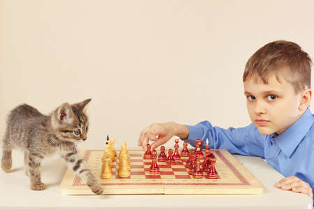 Little boy with a kitten plays chess Stock Photo