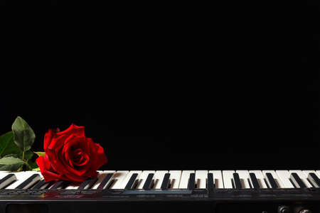 Scarlet rose on the keys of the synthesizer on a black background
