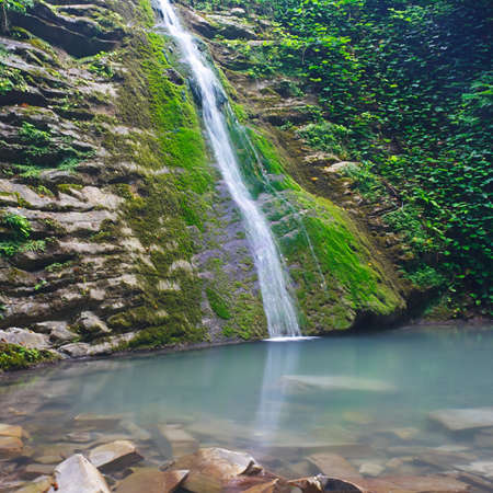 Slope covered with ivy and moss with a waterfall flowing down 版權商用圖片