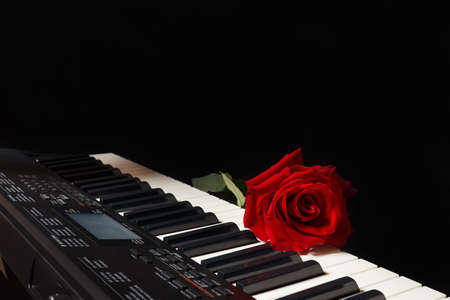 Scarlet rose on the keys of the electronic piano on a black background Stock Photo