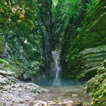 Canyon covered with moss and ivy with a calm river and a small waterfall