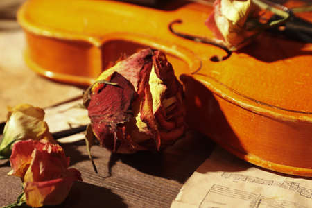 Dried flowers, vintage violin and old sheet music close up. Selective focus. Stock Photo
