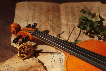 Violin, dried flowers and old notes on wooden background close up. Stock Photo