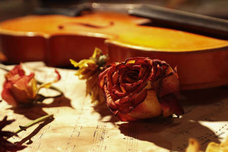 Dried flowers and vintage violin on rare sheet music close up. Selective focus.