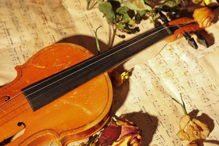 Old violin and dried flowers on rare music notes close up.