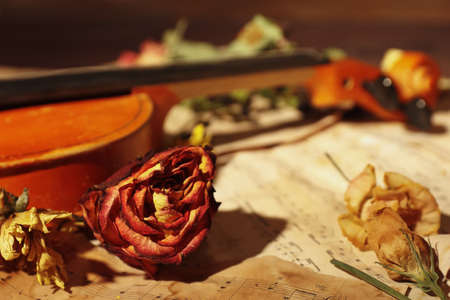 Dried flowers and vintage violin on rare music notes close up. Selective focus.