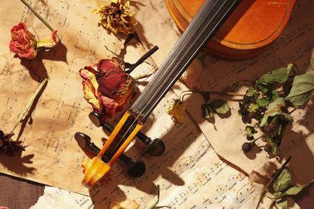 Rare violin, dried flowers and old sheet music close up. Zdjęcie Seryjne