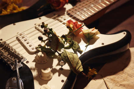 Electric guitar, dried flowers and old sheet music close up.