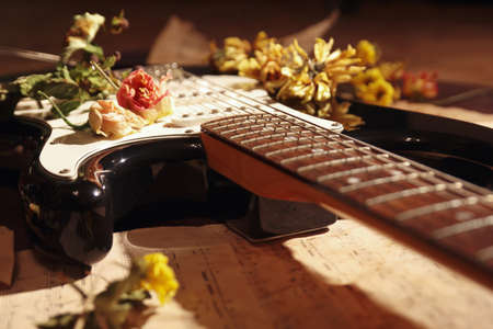 Electric guitar, dried flowers and rare notes close up. Selective focus. Imagens