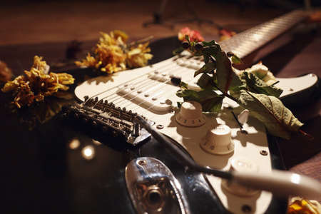 Romantic still life with an electric guitar and dried flowers close up. Selective focus.