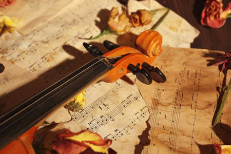 Violin, dried flowers and rare torn sheet music close up.