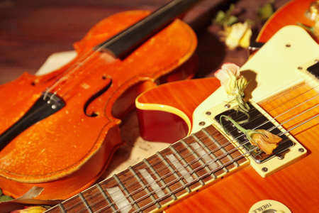 Vintage electric guitar, rare violin and dried flowers close up.