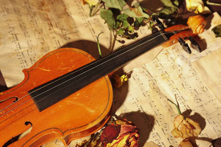 Old violin and dried flowers on rare sheet music close up.