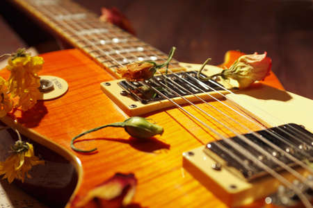Vintage electric guitar and dried flowers close up. Selective focus.