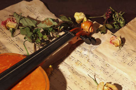 Vintage violin, dried flowers and rare sheet music on wooden background close up.