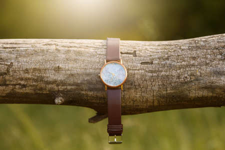 watch on the tree adventure and tourism summer Standard-Bild