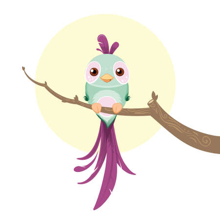 birdie: Vector illustration of a green and purple colored bird sittin on a branch
