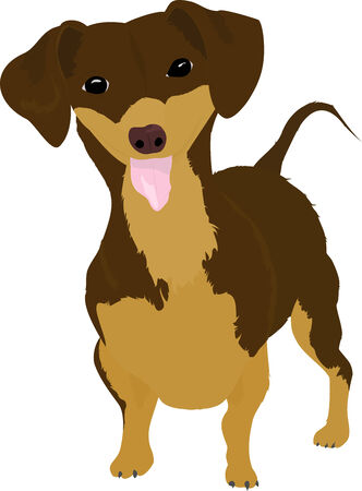 companions: smiling cartoon dachshund. fun dog on white background