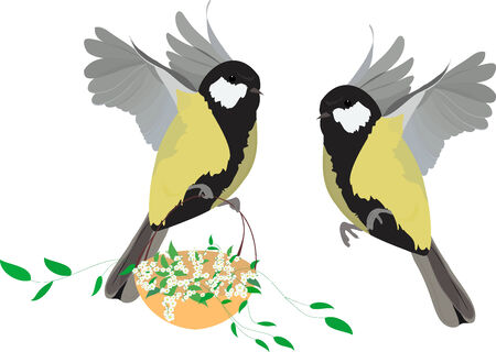 great tit  in fly with basket  of spring plants Vector