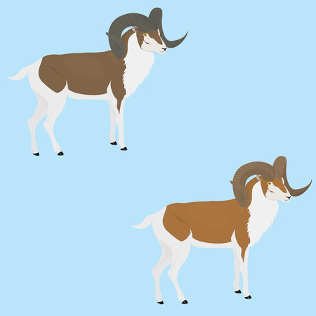 capra: brown goat or ram with twisted long horn