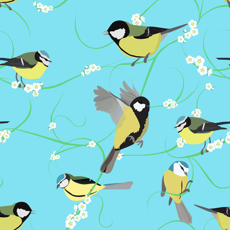 titmouse: spring titmouse seamless pattern with small white flowers