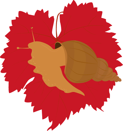 isolated big brown snail on bright red grape leaf