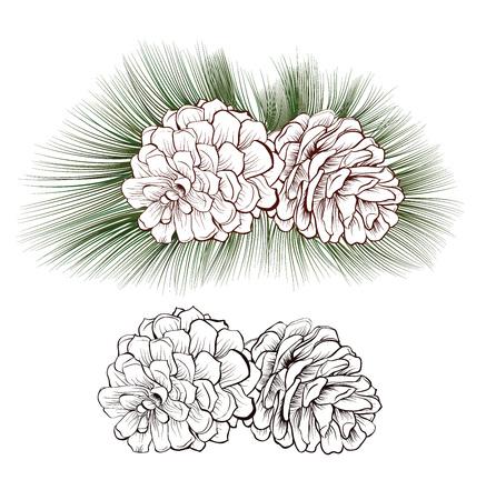 isolés noël cônes de pin tirées avec des aiguilles de sapin