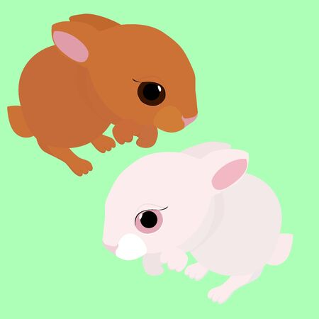 kiddish: rabbit,  white and brown cartoon animal isolated on green