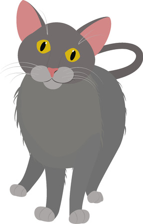 grey cat: grey cartoon cat  with yellow eyes isolated on white