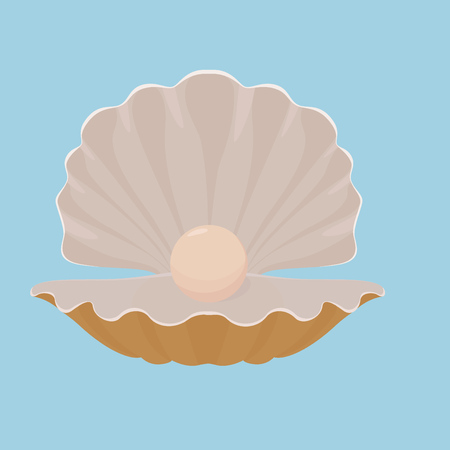scallop: Scallop open seashell with pearl isolated on blue