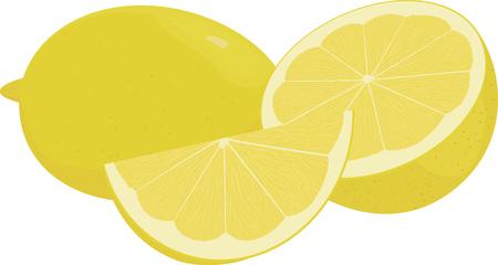 simple cross section: Fresh lemons, yellow  lime fruit vector illustration