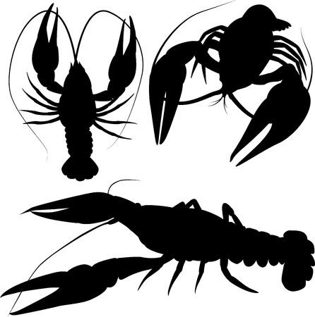 crawfish silhouettes, black  crayfish isolated on white
