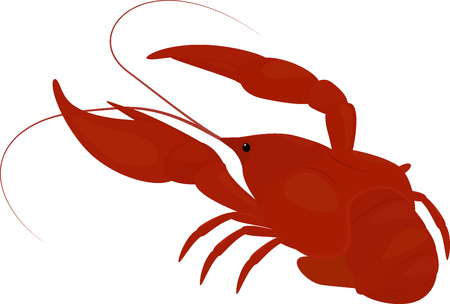 boiled red crayfish, crawfish isolated on white Illustration