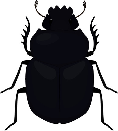 scarab: Scarab icon. Simple illustration of