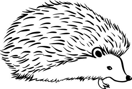 Hedgehog stylization icon. Line sketch Vettoriali