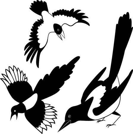 Die schwarze Silhouette einer Krähe. Rabe. Turm. Elster. Tätowierung.