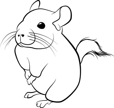 Cute chinchilla line art. Black line illustration Ilustracja
